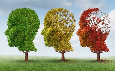 Research into mutual causes of heart failure and vascular dementia